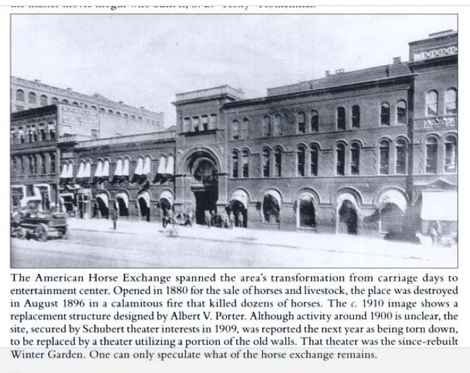 american horse exchange