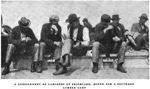 Lumbermen, ca 1900